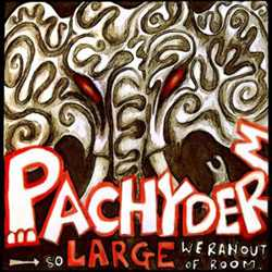 Pachyderm Studio - So Large We Ran Out Of Room compilation CD