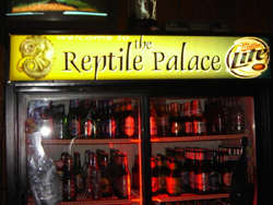 Reptile Palace in the Fox Valley
